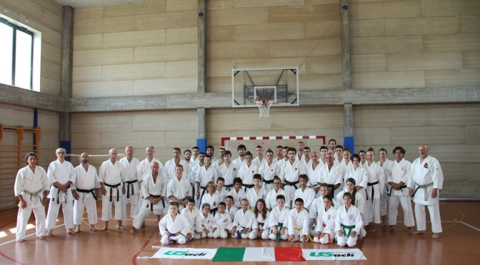 2014-06-28_karate-BS_small_02_per sfondo