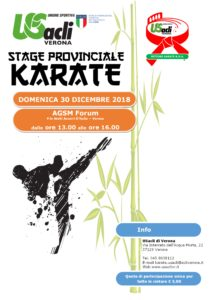 Stage di Karate all'AGSM Forum di Verona